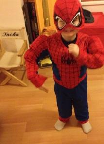 Spider Sacha